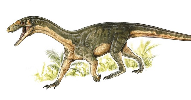 Dino ancestors looked like crocodiles