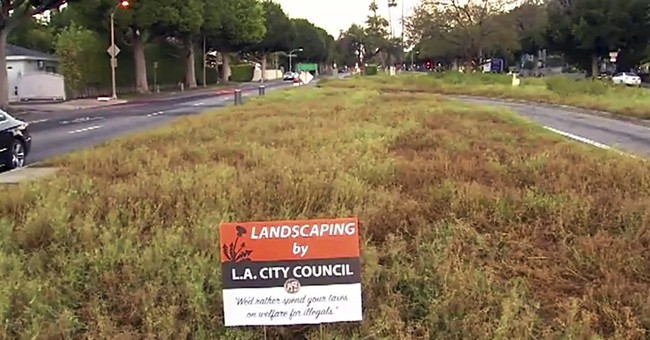 Fake lawn signs with anti-immigrant message turn up in LA