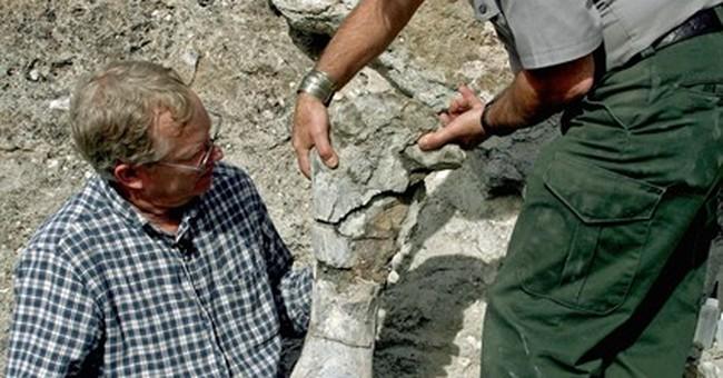 Correction: Dino Discovery story