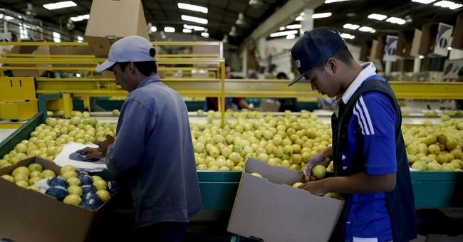 Argentine lemon ban Trump protectionism or sanitary measure?