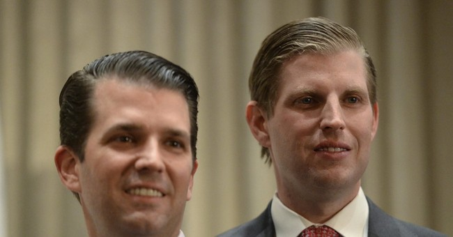 Trump sons seek to extend family brand into domestic markets