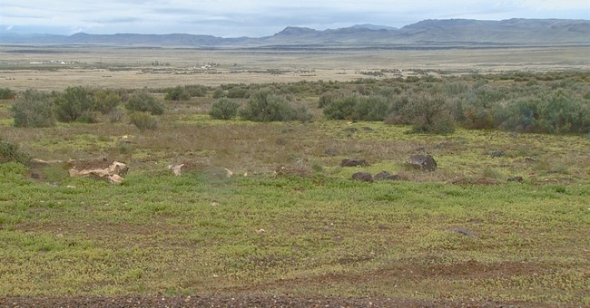 Idaho: Remains of 2 people found in Oregon Trail badger hole