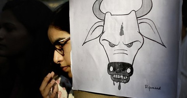 Human rights group demands India prosecute attacks over cows