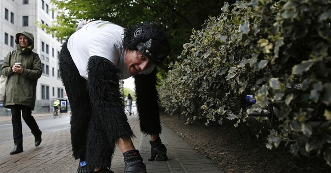 UK man dressed as gorilla crawls through London Marathon