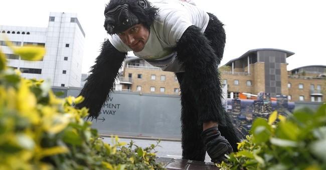 UK man dressed as gorilla crawls through London Marathon