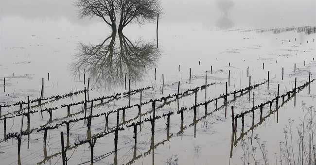 Officials: More than 40 percent of California out of drought