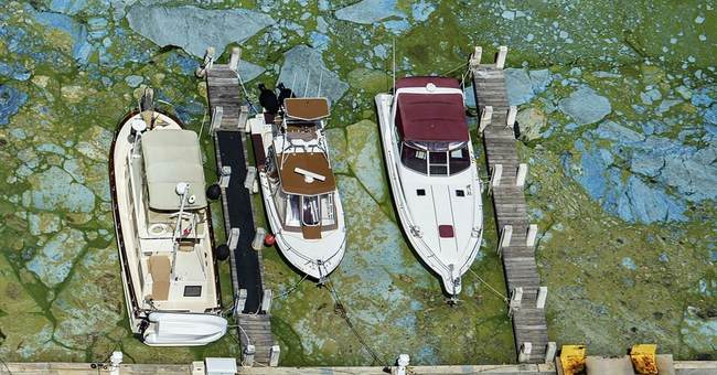 Florida's building boom threatens wildlife-rich lagoon