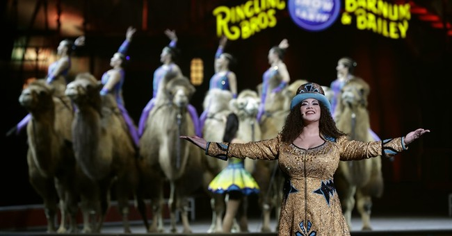AP NewsBreak: Ringling's final circus to be on Facebook Live