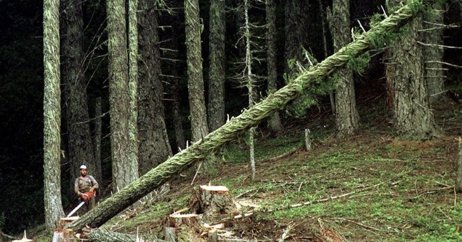 Timber counties struggle to provide services as aid dries up
