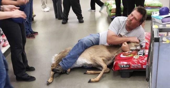 Unsuspecting Walmart customer takes down startled deer