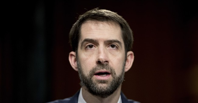 """GOP's Cotton in Iowa: """"I'm ready for that new beginning."""""""