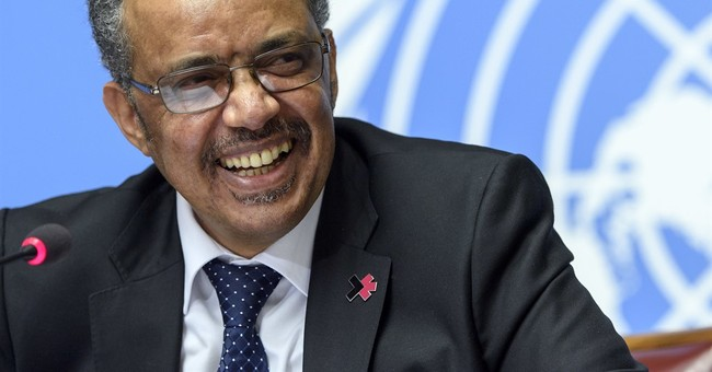 New WHO chief: Planned US funding cuts not a 'closed issue'