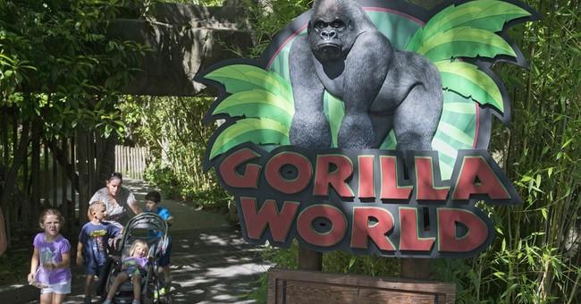 No public events at Ohio zoo where gorilla killed 1 year ago
