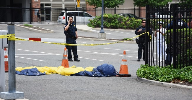 Navy parachutist dies during demonstration over Hudson River