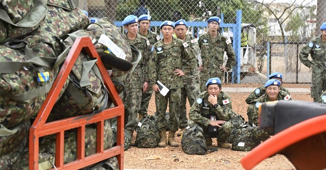Japan public split on idea to cite military in constitution