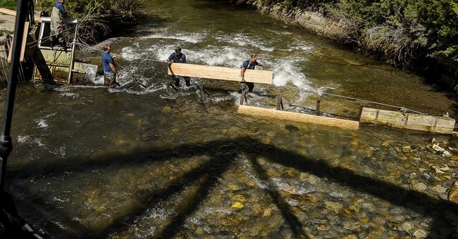 3 dead after girl falls into raging river waters in Utah
