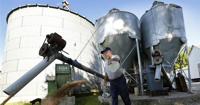 Farmers decry Trump plans to cut agriculture subsidies