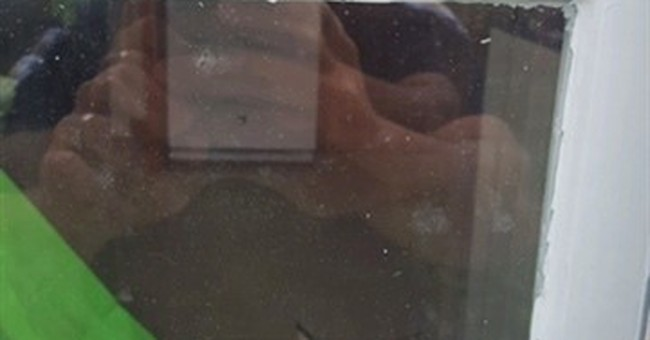 Police: Family held prisoner by bobcat inside their house