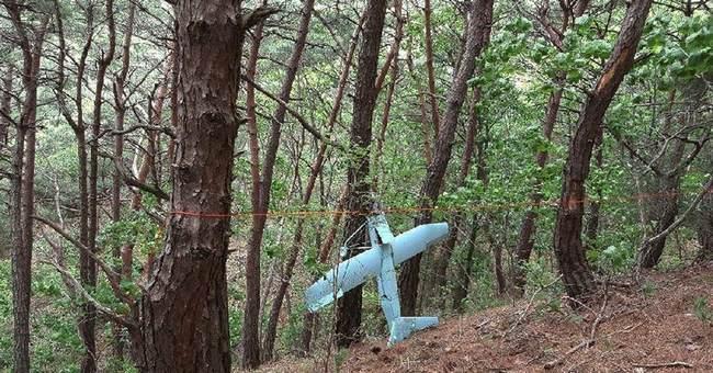 Suspected N.Korea drone photographed US missile defense site