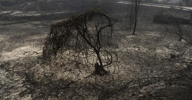 Leaping into water tanks to escape Portugal's deadly fires