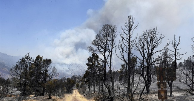 Utah blaze caused by torch used to kill weeds