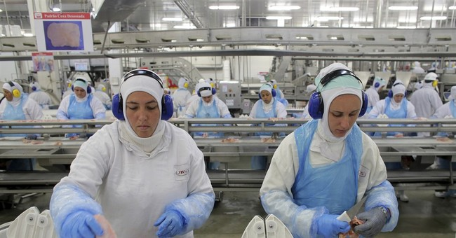 Brazil to try  to reverse US ban on Brazil meat