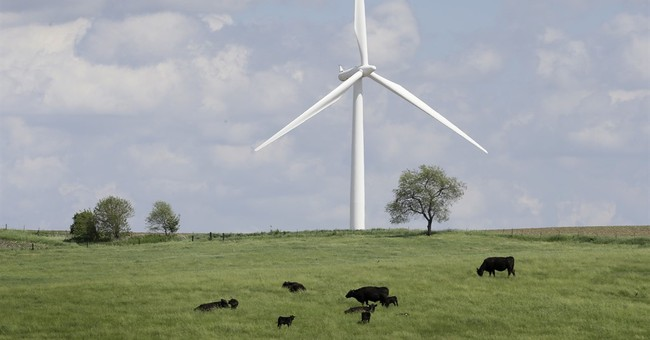 Trump's putdown of wind energy whips up a backlash in Iowa
