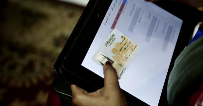Egypt census workers detect another baby boom