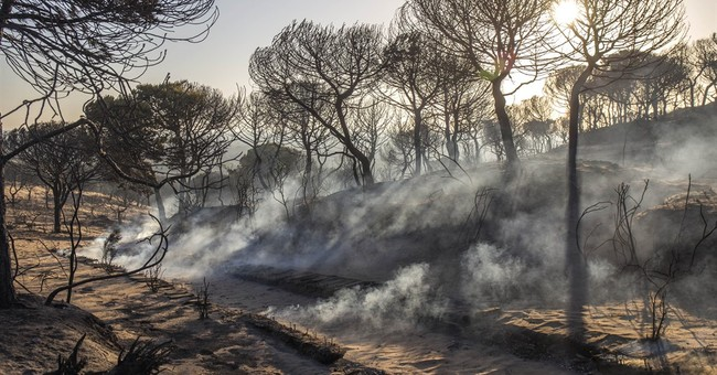 Battle resumes to extinguish fire near Spain national park