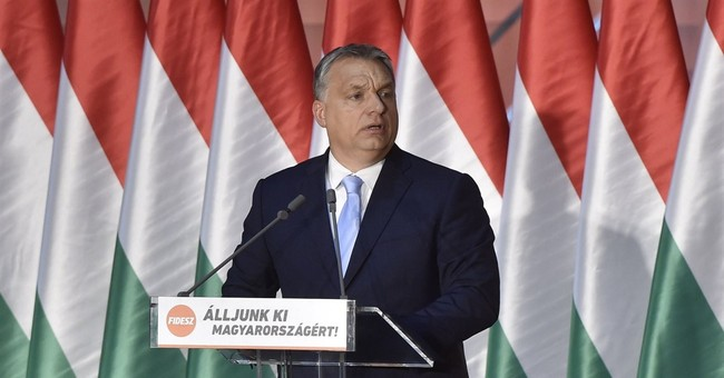Amnesty International won't comply with Hungary NGO law