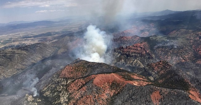 Utah officials blame lack of logging for major wildfire
