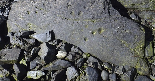Prehistoric stone fish trap discovered on Alaska island
