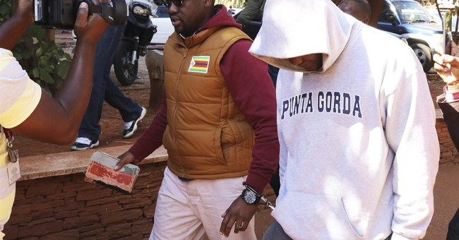 Zimbabwe pastor and anti-government activist freed on bail