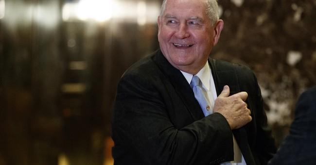 AP Source: Trump picks former Ga. Gov. Perdue to lead USDA