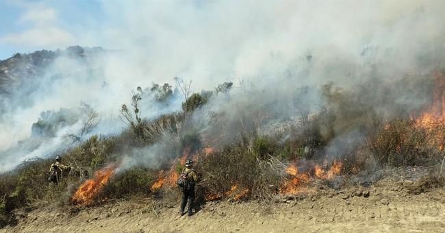 The Latest: Mild winds, more crews help fight Arizona fire