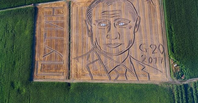 Italian farmer turns field into Putin portrait ahead of G20