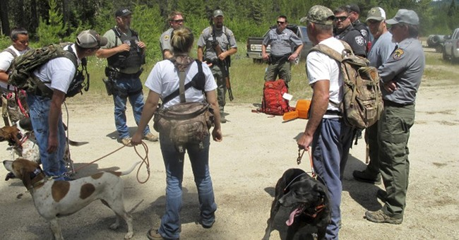 Black bear charges, bites hiker in popular Idaho forest