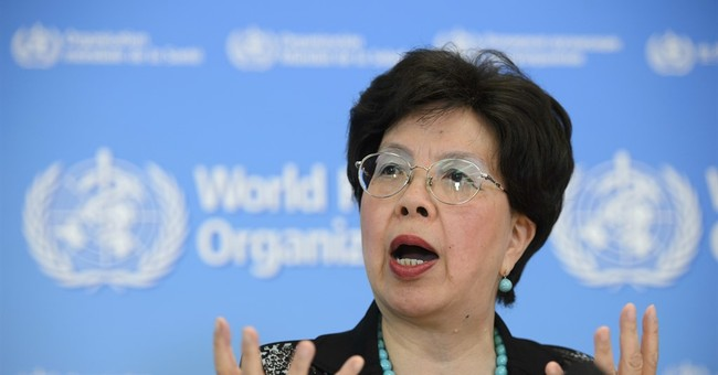 UN health agency's new chief says he will check travel costs