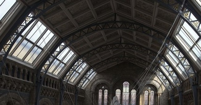 Britain's Natural History Museum unveils huge whale skeleton