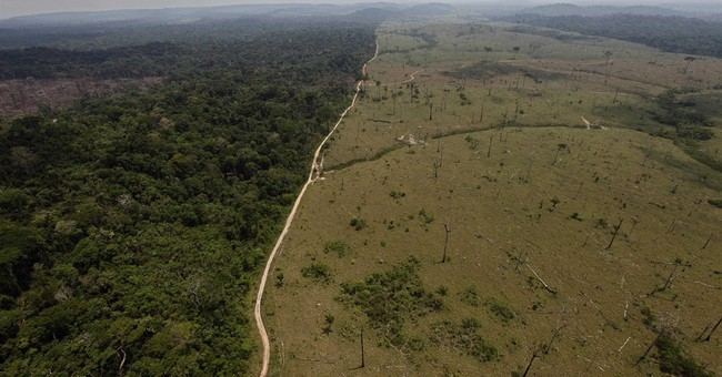 Brazil's Environment Min proposes shrinking Amazon reserve