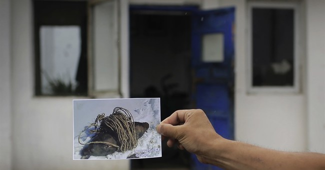 64 years after Korean War, North still digging up bombs