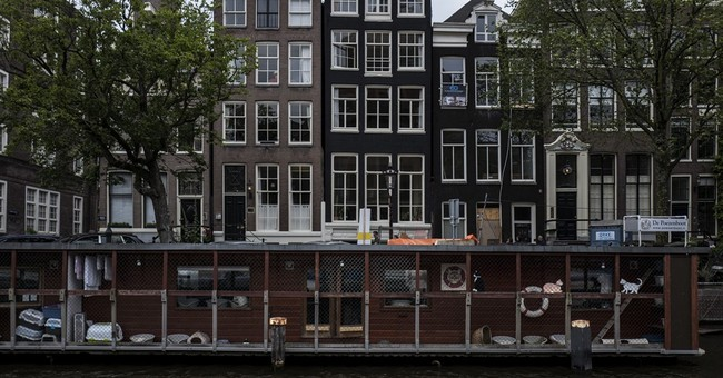 AP PHOTOS: Stray cats find a home on an Amsterdam houseboat