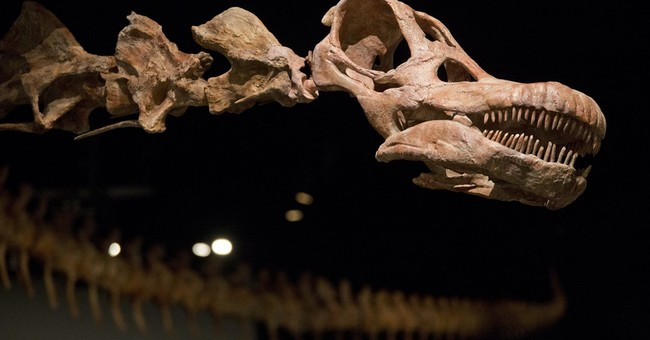 Meet the new heavyweight champion of dinosaurs: Patagotitan