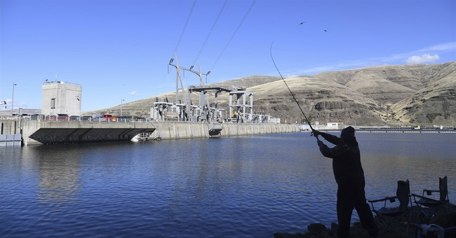 Trump administration urged to avoid salmon protection rules