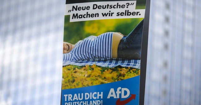 German nationalists pull anti-Islam pig poster
