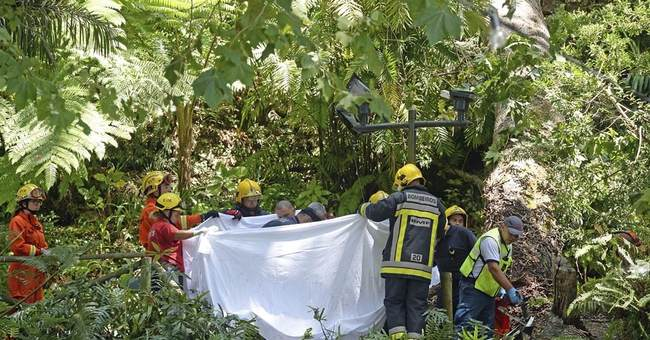 Baby, 2 women among 13 killed by tree on Portuguese island