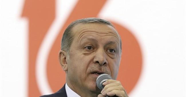 Erdogan urges German-Turks to punish mainstream parties