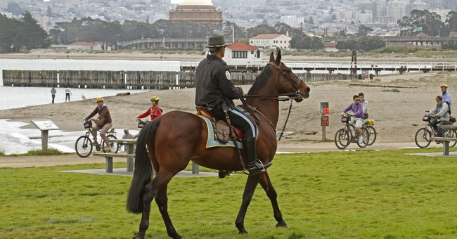Parks Service issues permit for San Francisco rally