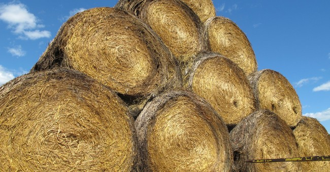 Getting drought-relief hay to Northern Plains no easy task