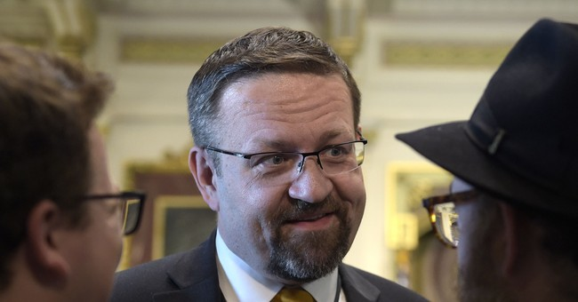 National security aide Sebastian Gorka leaves White House